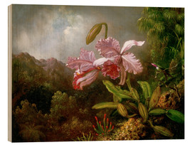 Wood print  Orchids in a Jungle - Martin Johnson Heade