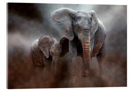 Acrylic glass  Elephant with baby - Peter Roder