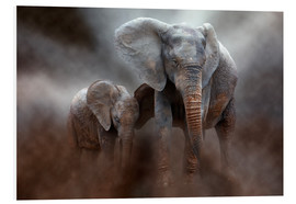 Foam board print  Elephant with baby - Peter Roder