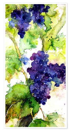 Premium poster Red grapes