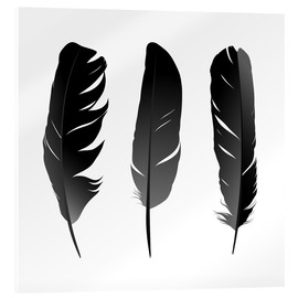 Acrylic print  Three feathers