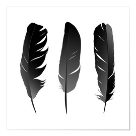 Premium poster  Three feathers