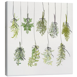 Canvas print  Herb bouquets