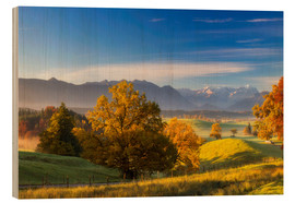 Wood print  Autumn in Bavaria with view to Zugspitze - Dieter Meyrl