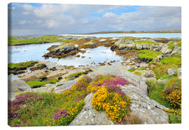 Canvas  Ireland Landscape with wild flowers