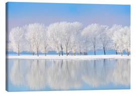 Canvas print  Frost-covered oaks