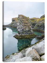 Canvas print  Rocky coastal scenery in Iceland