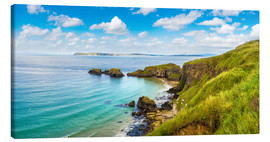 Coast of Northern Ireland on a beautiful summer day