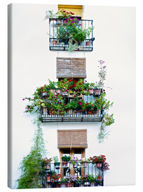 Canvas print  Facade with balconies full of flowers in Valencia