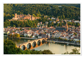 Premium poster  View of the Old Town of Heidelberg from the Philosophenweg - Michael Valjak