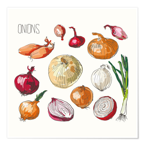 Premium poster Onions collage