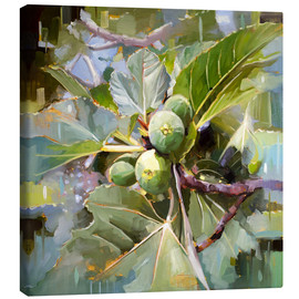 Canvas print  Wild Sicilian figs - Johnny Morant