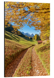 Aluminium print  Golden autumn in Bavaria - Achim Thomae