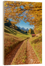 Wood  Golden autumn in Bavaria - Achim Thomae