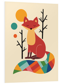 Forex  Rainbow Fox - Andy Westface
