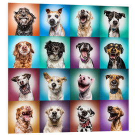 Foam board print  More funny dog faces - Manuela Kulpa
