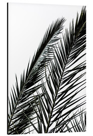 Aluminium print  Palm Leaves - Mareike Böhmer Photography