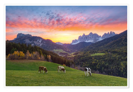 Premium poster View into the Villnöss Valley in South Tyrol at sunrise