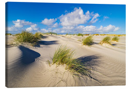 Canvas print  Landscape with dunes on the island Amrum - Rico Ködder