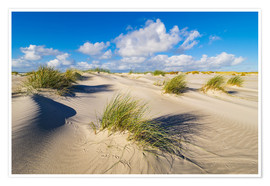 Premium poster Landscape with dunes on the island Amrum