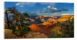Acrylic glass  Grand Canyon Idyll - Michael Rucker