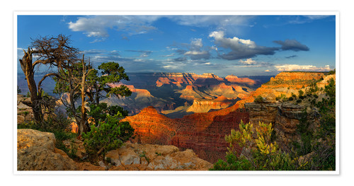 Premium poster Grand Canyon Idyll