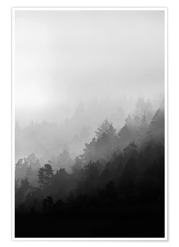 Premium poster Misty mornings
