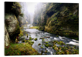 Acrylic print  Kamnitz Gorge in the Saxon Switzerland - Reemt Peters-Hein