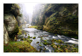 Premium poster  Kamnitz Gorge in the Saxon Switzerland - Reemt Peters-Hein