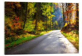 Acrylic print  Road through autumn forest - Reemt Peters-Hein