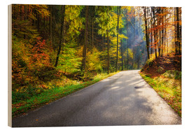Wood print  Road through autumn forest - Reemt Peters-Hein