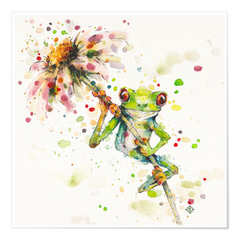 Premium poster  Hello there, bright eyes (Green tree frog) - Sillier Than Sally