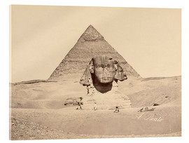 Acrylic print  Chephren pyramid and sphinx - Antonio Beato