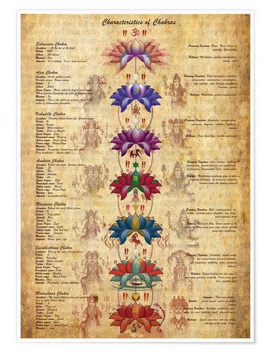 Premium poster Meaning of the Chakras