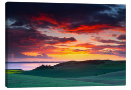 Canvas print  Rolling green hills and lake at sunset - Mark Scheper