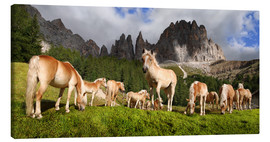 Canvas print  Haflinger horses in a meadow in front of the Rosengarten Mountains - Michael Rucker