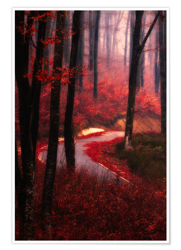 Premium poster forest glow