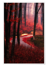 Poster forest glow