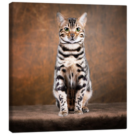 Canvas print  Proud Bengal cat - Janina Bürger