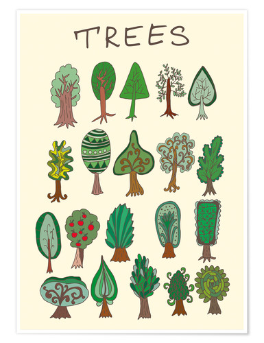 Premium poster Our tree species