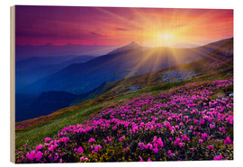 Wood print  Rhododendron in the Carpathians