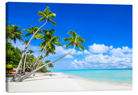 Canvas print  White beach and palm trees in the tropics - Jan Christopher Becke
