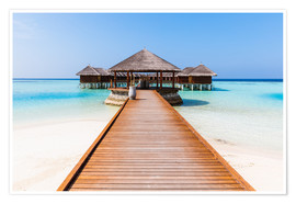 Premium poster  Jetty and overwater bungalows, Maldives - Matteo Colombo