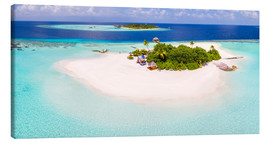 Matteo Colombo - Aerial view of island in the Maldives
