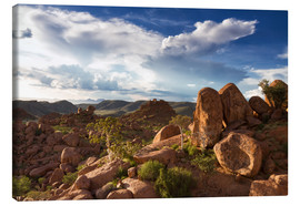 Canvas print  Beautiful landscape in Damaraland, Namibia, Africa - Circumnavigation