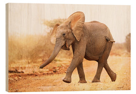 Wood print  Happy elephant, South Africa - wiw