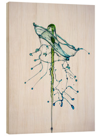 Wood print  Water drops Green fir-tree - Stephan Geist