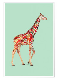 Premium poster COLORED GIRAFFE
