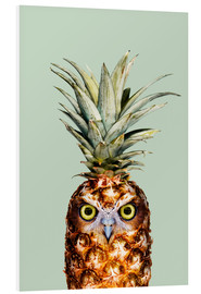 Forex  PINEAPPLE OWL - Jonas Loose