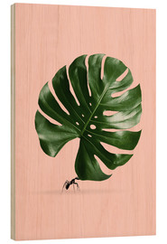 Wood  MONSTERA ANT - Jonas Loose